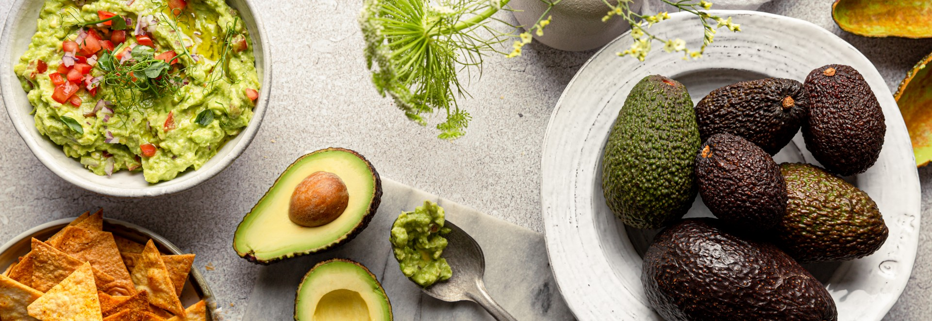 Alles Avocado Inspirationsseite